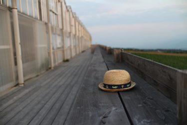 エレピの音色がきれいなほのぼのとした音楽素材「小さな麦わら帽子」