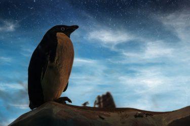 切ない、悲しい雰囲気のロックバラート「南極大陸」